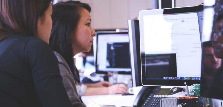 traductor profesional de paginas web